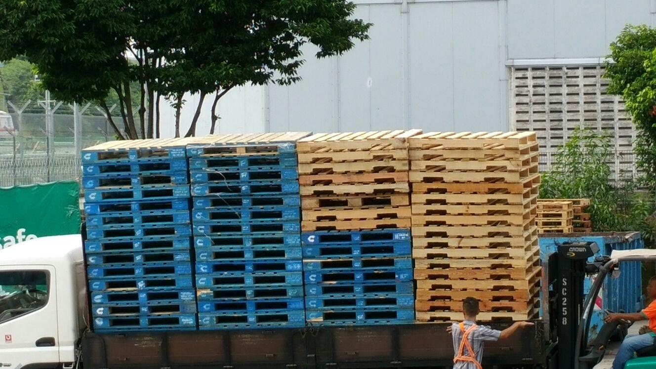 Pallets Disposal Harvest Trading Enterprise
